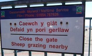 Walesiska språket