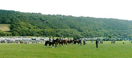 Hästuppvisning
