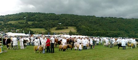 MONMOUTHSHIRE SHOW 2013