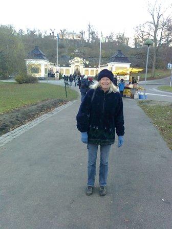 Stockholm - På väg till julmarknad på Skansen